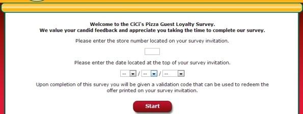 cicisvisit survey